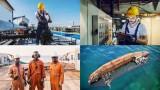 Cognitive Skills - Seafarer Problem Sensitivity Training